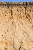 pic of loam  - Cut of soil with different layers - JPG