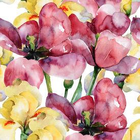 picture of purple iris  - Floral pattern - JPG