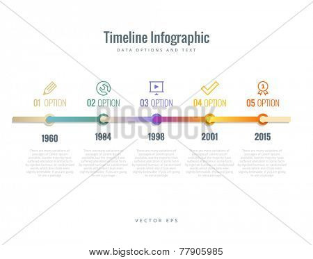 Timeline Infographic with diagrams, options and text