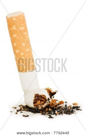 Cigarette Butt Isolated On White Background
