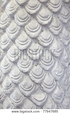 Dragon Skin white texture as Background