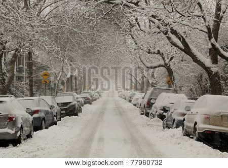 MONTREAL, CANADA, DECEMBER 10, 2014:  First snowstorm of 2014-2015 winter season in Montreal, Quebec.  More than 30 cm in 1 day on the city.