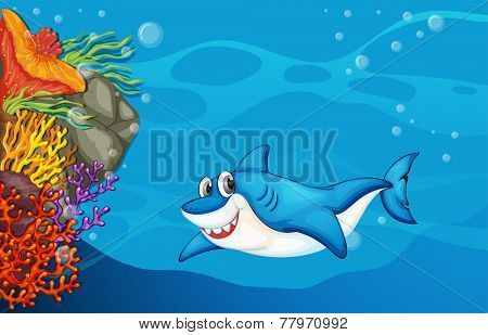 A big shark under the sea