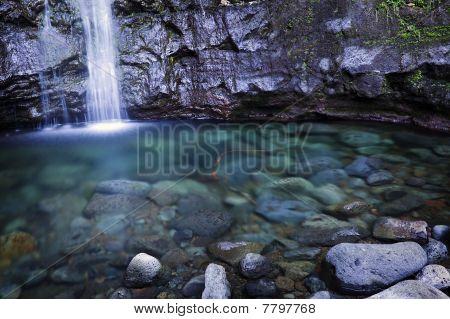 Manoa Falls, Oahu, Hawaiian Islands