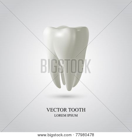 Three-dimensional Tooth Background.