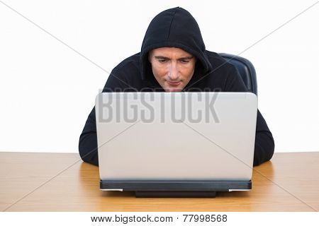 Burglar in hood jacket using laptop on white bakcgorund