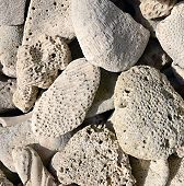 foto of caribbean  - Limestone rocks containing fossils - JPG