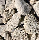 image of caribbean  - Limestone rocks containing fossils - JPG