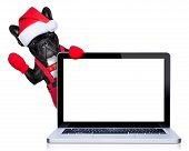 picture of rudolph  - christmas french bulldog dog with santa claus costume behind a laptop computer pc isolated on white background - JPG