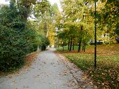 image of turin  - View of a path in Valentino Park - JPG