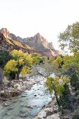 ������, ������: The Watchman At Zion