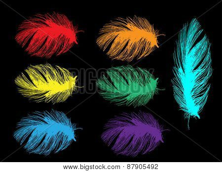 illustration with seven bright color feathers isolated on black background