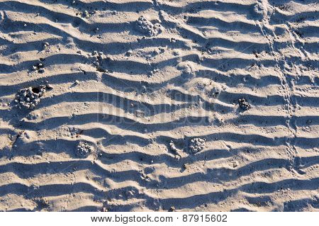 Traces of the waves on the white sand. Black and white. Background.