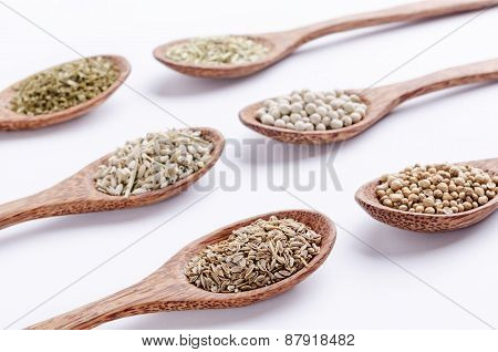 spooned collection of spices