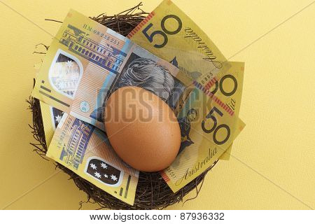 Egg in a Money Nest