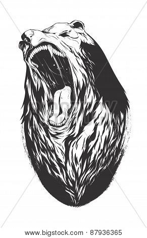 Vector Illustration With Bear Head