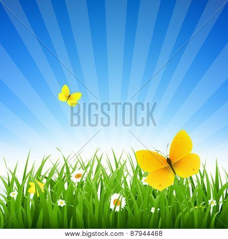Nature Background With Grass And Flowers With Gradient Mesh, Vector Illustration
