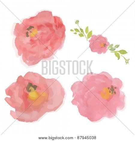 Watercolor Pastel Roses, Vector Illustration