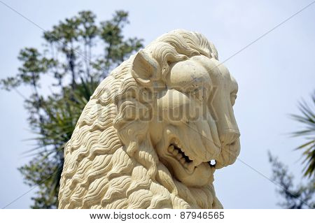 Statue of Lion in Darjeeling
