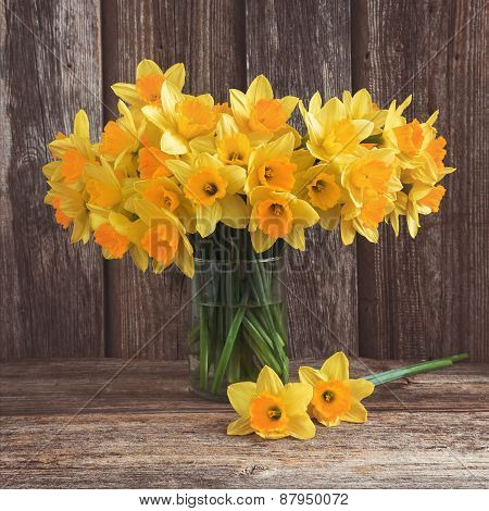 Bouquet of fresh spring narcissus on wooden background