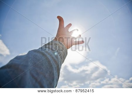 Reaching For The Sun
