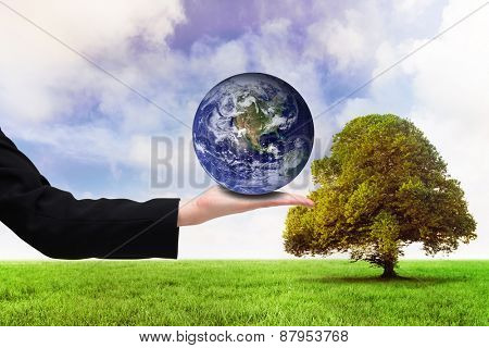 Businesswomans hand presenting against tree in green field