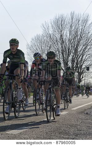 Vicopisano, Italy - March 12: Tirreno-Adriatico race March 12, 2015 In Vicopisano, Italy