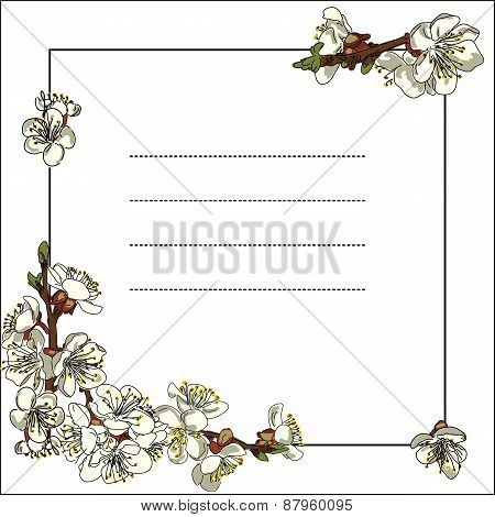 Frame With Apple Tree Flowers