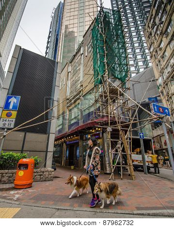 Woman crossing the street in Hong Kong with two dogs