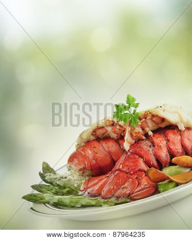 Grilled Lobster Tail  With Asparagus