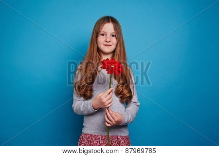 Cute girl with red gerbera looking at camera