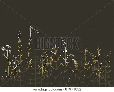Wild Field Flowers and Grass on Black Background