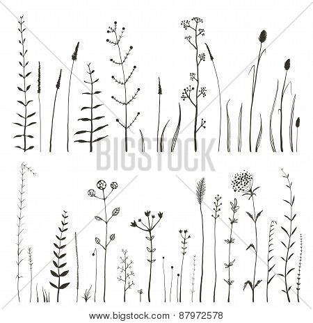 Sketchy Wild Field Flowers and Grass on White Monochrome Collection