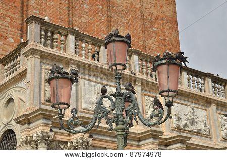 Doves On Street Lamp