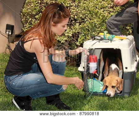LOS ANGELES - FEB 14:  Maria Menounos at the The Beagle Freedom Project at the Private Location on April 14, 2015 in Valley Village, CA