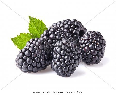 Blackberry in closeup