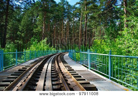 Railway In A Forest