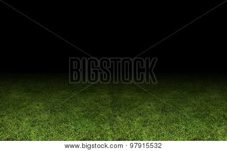 grass at the stadium. A close-up as background