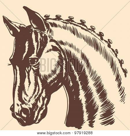 Thoroughbred Horse Head Profile Racing Exhibition Mane
