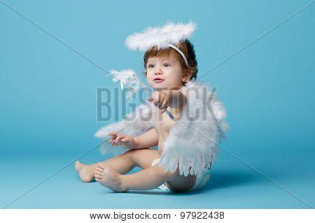 little angel on blue background