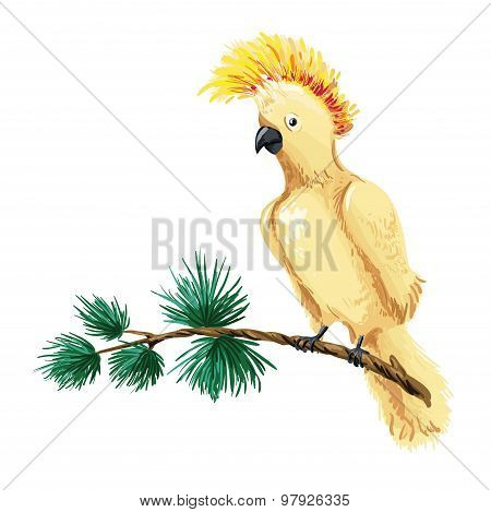 Vector Macaw Illustration. Yellow Parrot Sitting On Branch.
