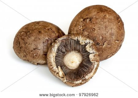Three brown mushrooms, isolated on white.