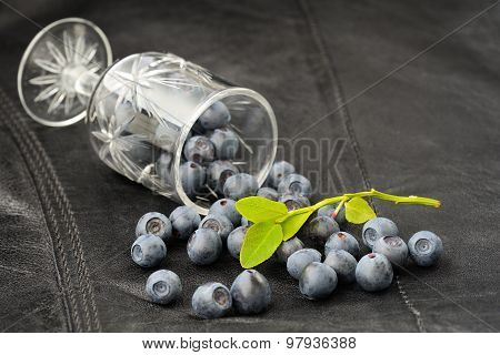 Wild Blueberries Scattered From Small Wineglass On Black Leather Background