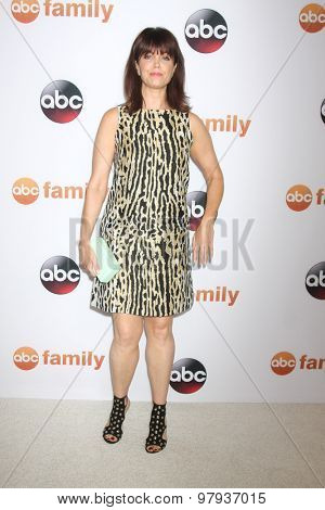 LOS ANGELES - AUG 4:  Bellamy Young at the ABC TCA Summer Press Tour 2015 Party at the Beverly Hilton Hotel on August 4, 2015 in Beverly Hills, CA