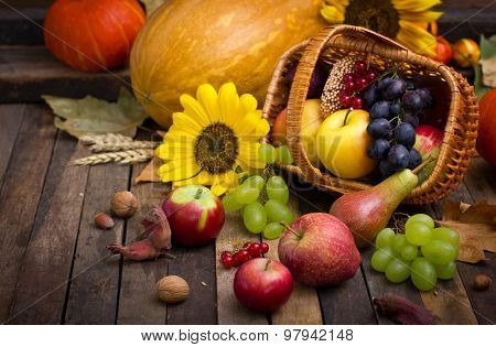 Autumn harvest - fresh fruits in the basket