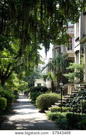 Savannah, Georgia, USA historic downtown sidewalks, rowhouses and oak trees.