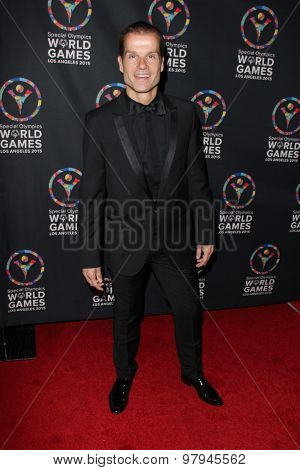 LOS ANGELES - JUL 31:  Louis Van Amstel at the Special Olympics Inaugural Dance Challenge at the Wallis Annenberg Center For The Performing Arts on July 31, 2015 in Beverly Hills, CA