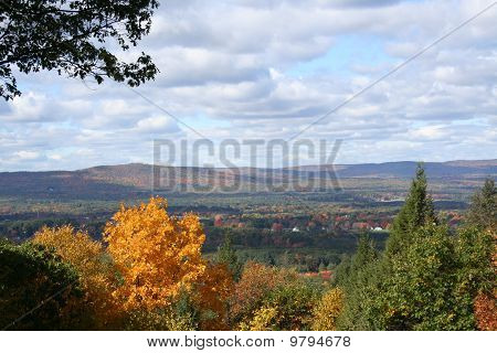 Fall Foliage in Full Color