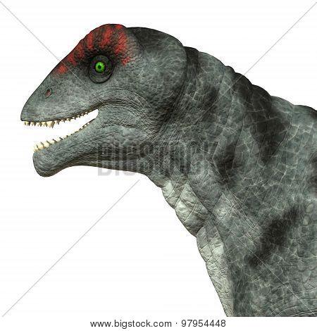 Moschops Dinosaur Head
