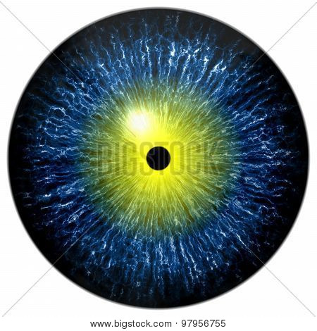 Blue Alien, Human Or Reptile Eye With Yellow Circle Around The Narrow Pupil